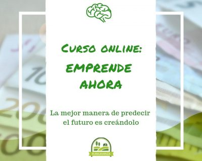 Curso online: Emprende Ahora
