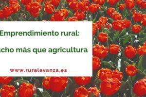 Emprendimiento rural