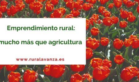 Emprendimiento rural, mucho más que agricultura.