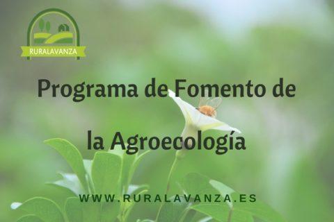 Programa fomento agroecología
