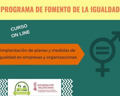 Curso online: Implantación de planes y medidas de igualdad en empresas y organizaciones