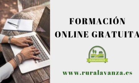 Aprovecha el verano y amplia tus conocimientos con nuestra formación online gratuita